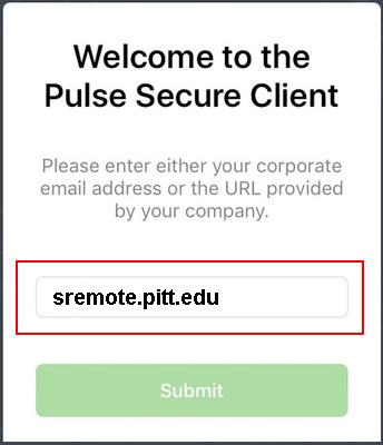 Pulse Secure Welcome Window