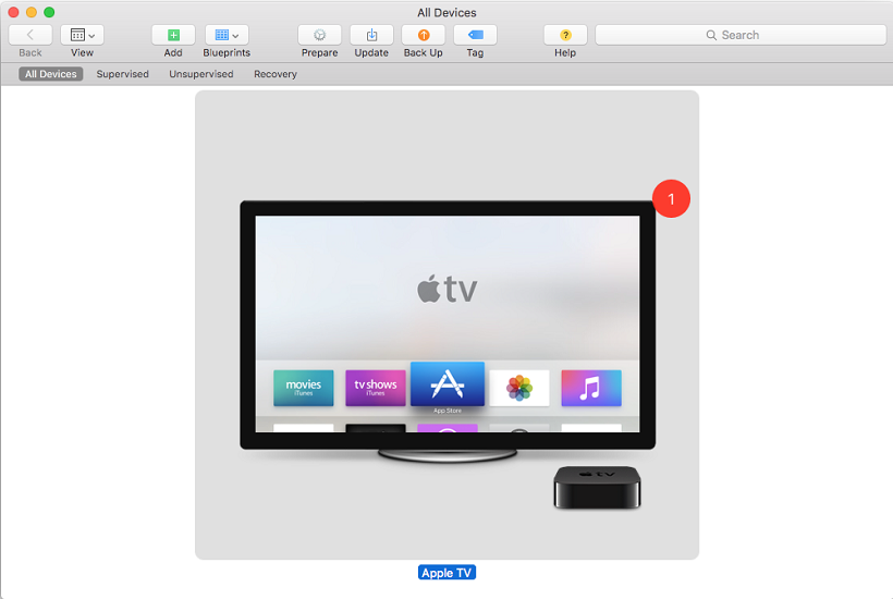 Apple TV Screenshot 5